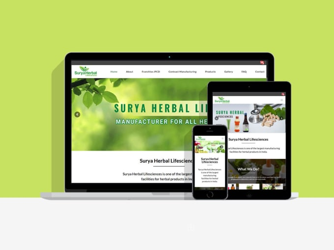 create a unique and professional wordpress website design