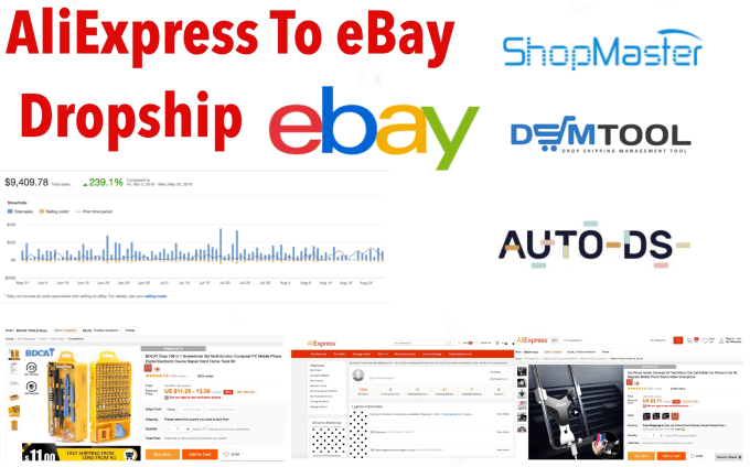 Ebay How Much Money Did I Make In 2019 Dropship Site