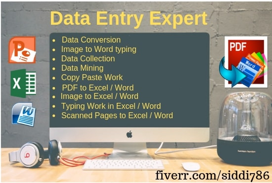 do fine and accurate offline or online data entry jobs
