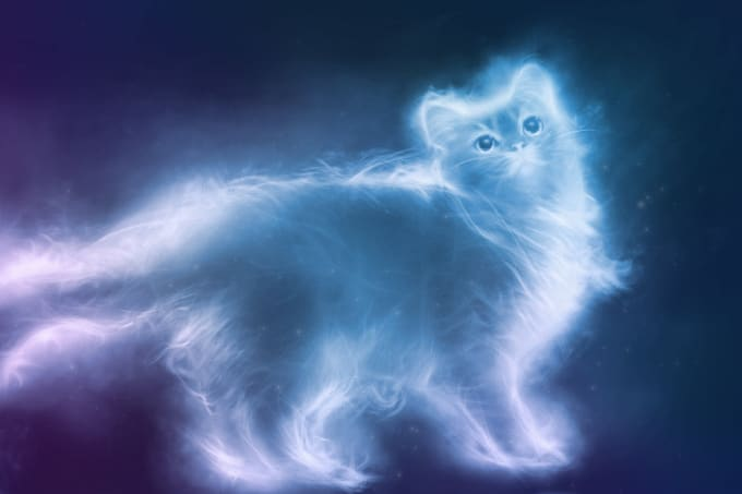 belliaellemanae : I will cast a spell to summon your spirit animal for $15  on www fiverr com