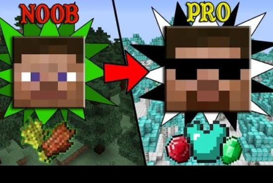 make u an pro in minecraft