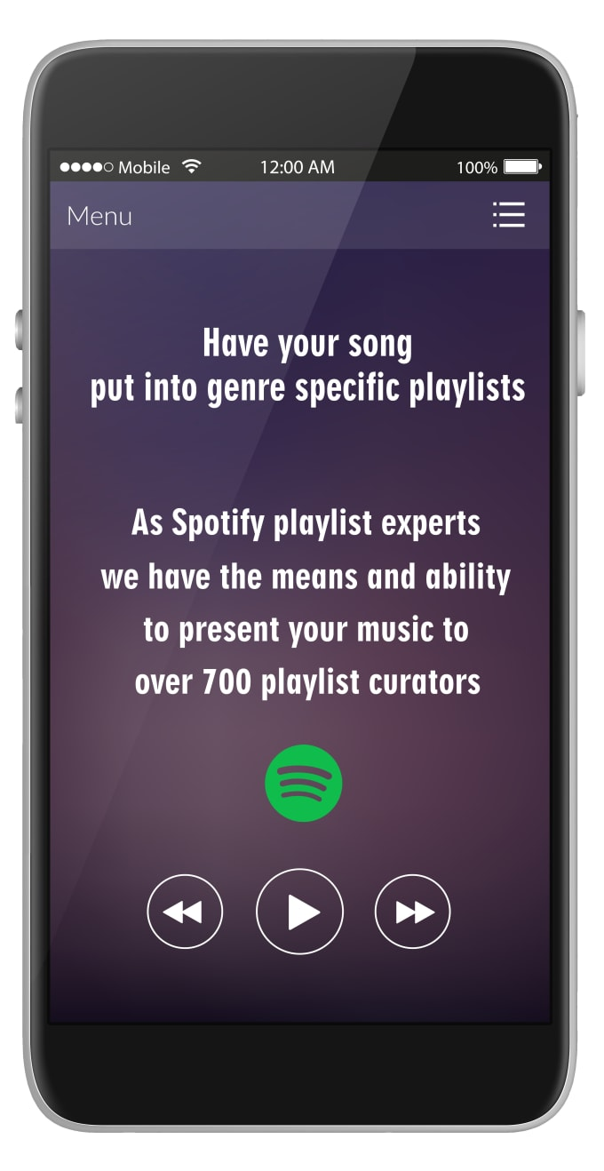 provide you with large scale playlist placement