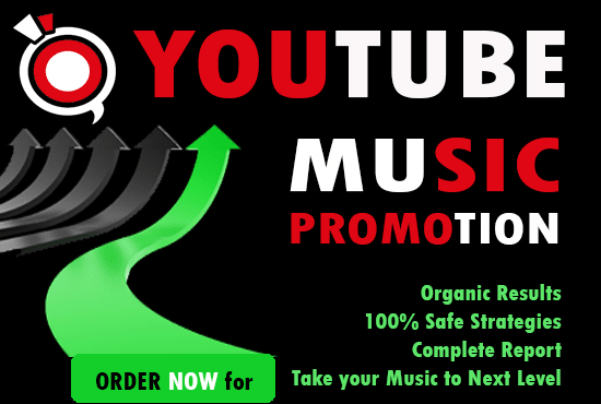 run a professional youtube music promotion campaign