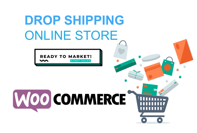 build dropshipping or woocommerce store