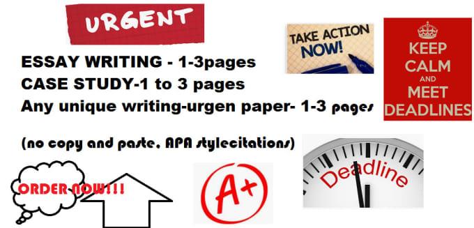 write essay assignments us uk au ca fast