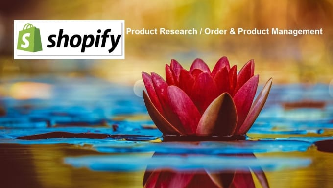 shopify product research VA
