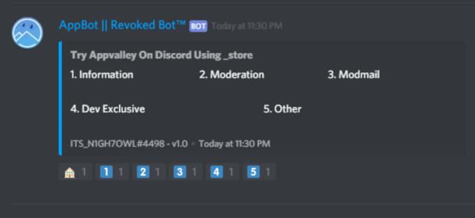 program a custom discord bot for your server