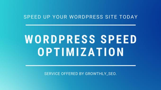 I will do wordpress speed performance optimization