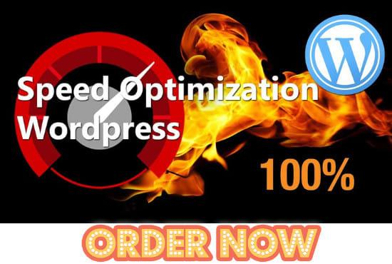 I will increase wordpress page speed, fix slow admin, woocommerce