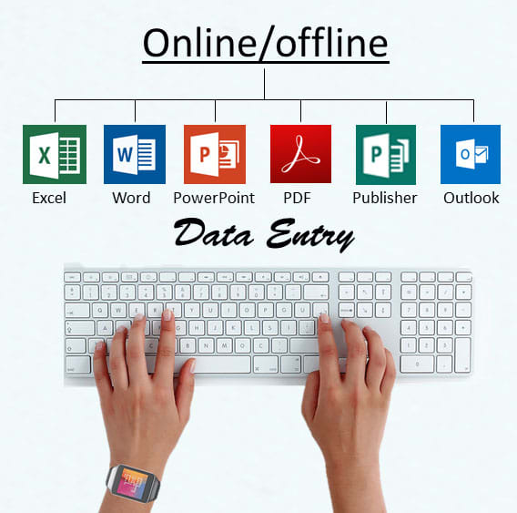 do any type of data entry job online offline word excel etc
