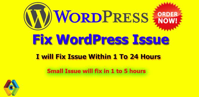 fix wordpress issues,wordpress errors,bug or design issue