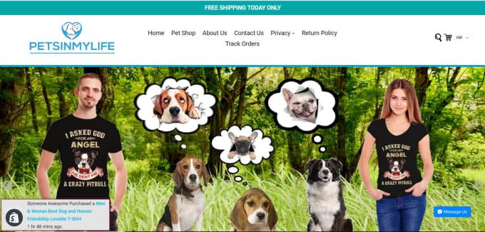 build shopify dropshipping store on premium shopify theme