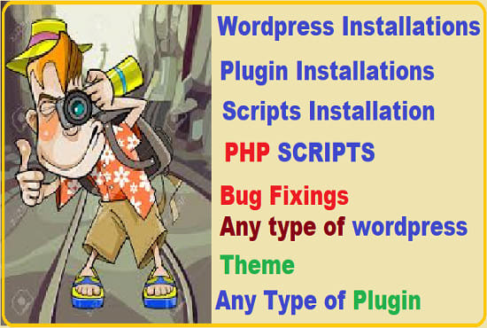 deliver any type of wordpress plugin and script and install