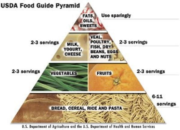 disadvantages of food guide pyramid The cons of the usda food pyramid come more so from the way the individuals read it then the food guide pyramid offers consumers an easy-to-read graphic that.