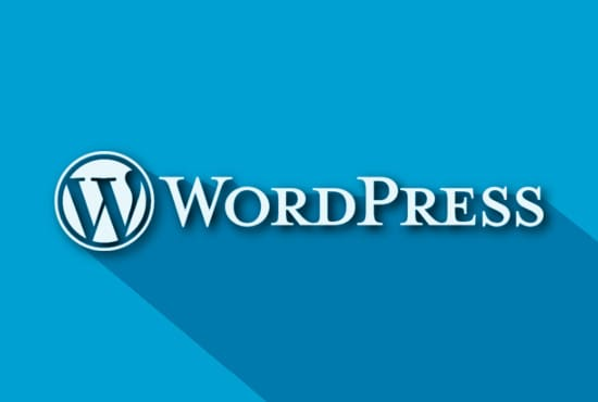 develop or customize wordpress project