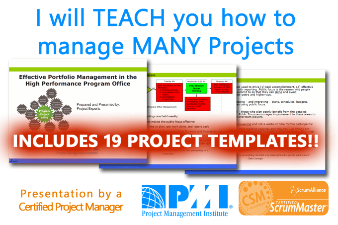Teach You How To Manage Many Projects By A Certified Pmp By