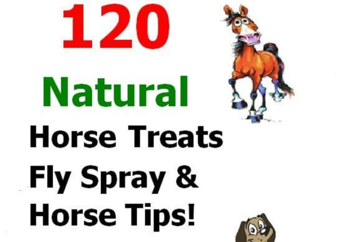 Send 120 natural horse treat, fly spray