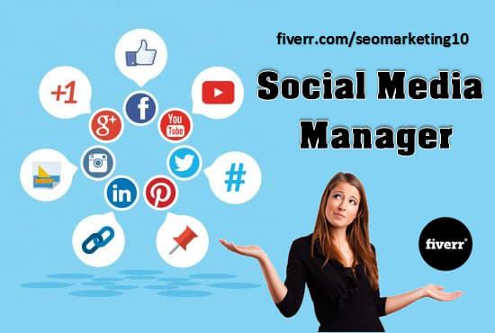 social media management fiverr. Black Bedroom Furniture Sets. Home Design Ideas