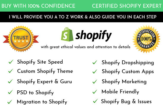 do any kind of shopify theme design and customization
