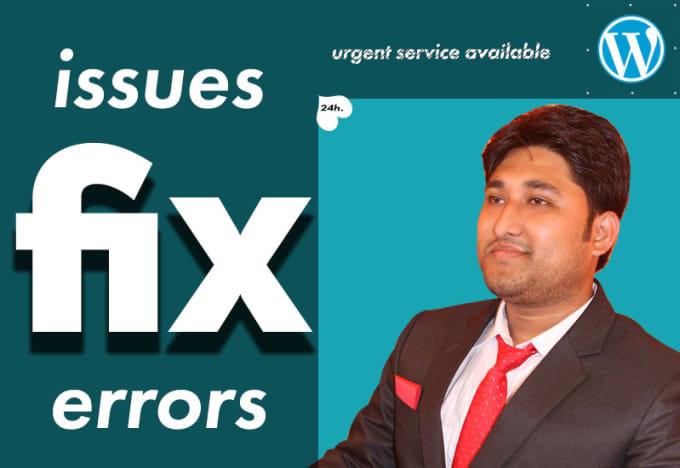 fix wordpress issues, wordpress errors within 24hours