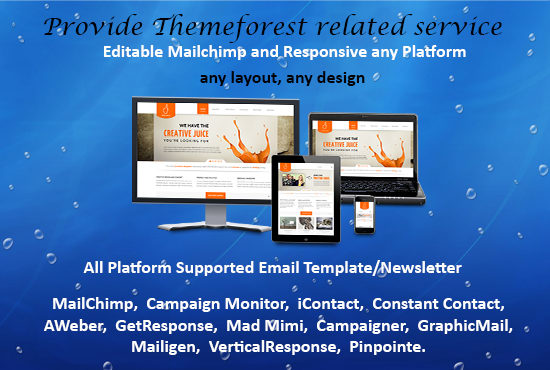 Design Mailchimp Editable And Responsive Html Email Template By