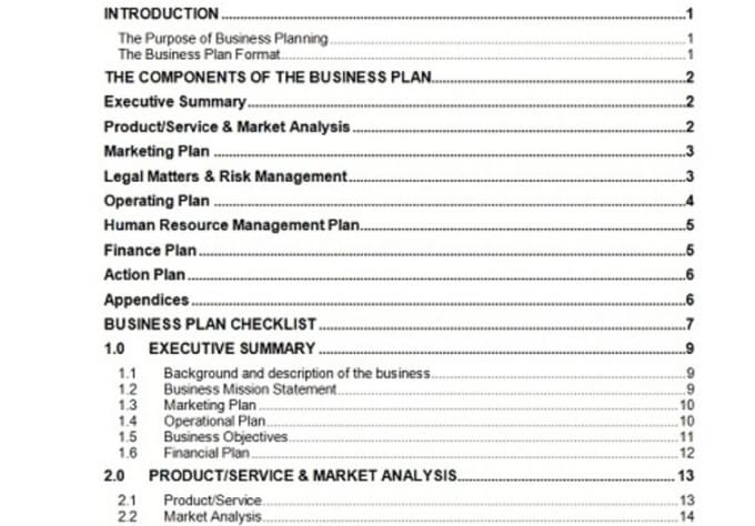 Send You A  Page Business Plan Template With Cash Flow Forecast