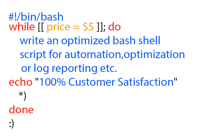 write an optimized bash shell script