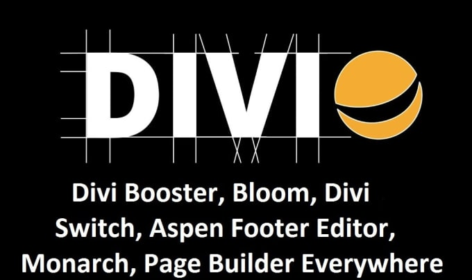 be your divi theme expert