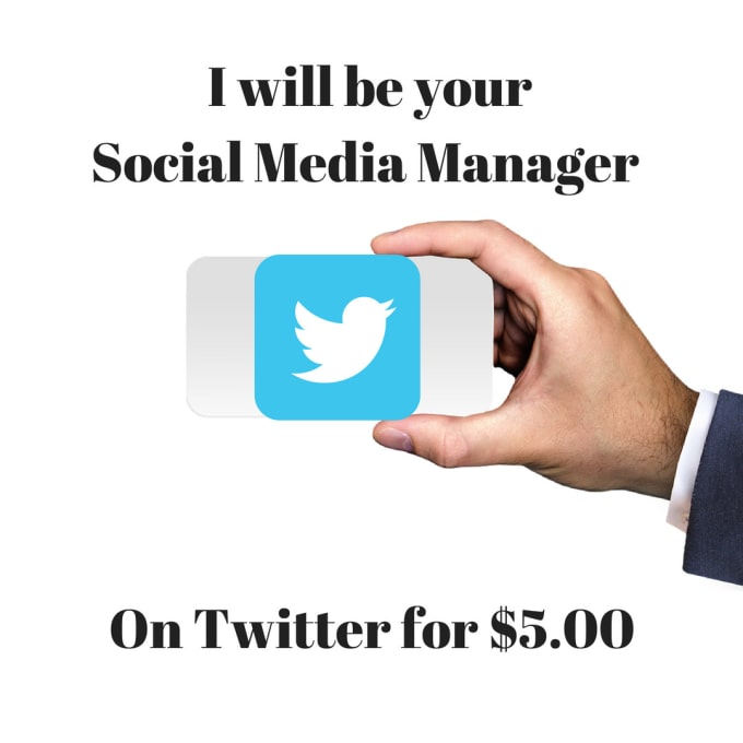 manage your twitter account for a week