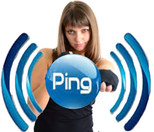 seo ping your website blog url