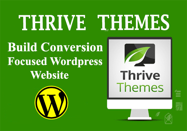 how to use a theme to build website