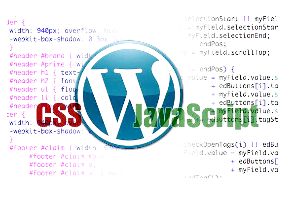 fix your wordpress css issues