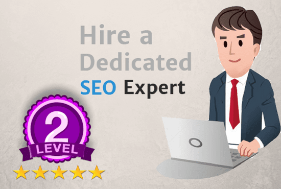 provide all in one SEO service