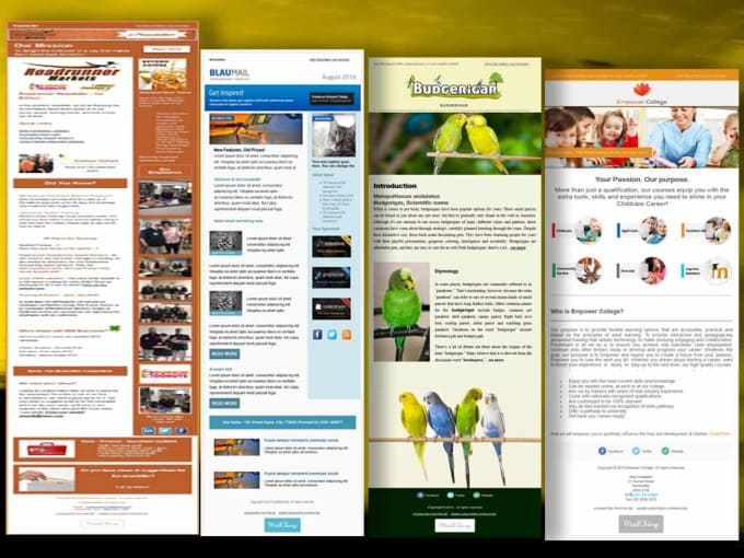 Design Mail Chimp Email Newsletter Template