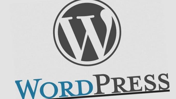 fix wordpress errors, issues and customize theme