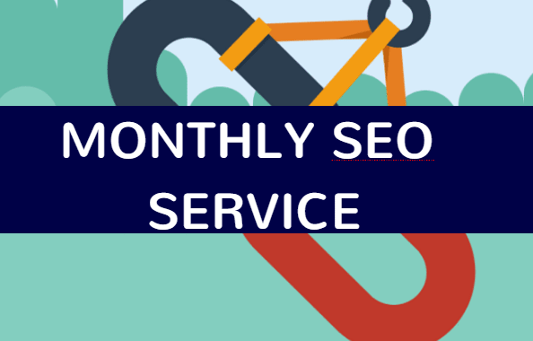 do 1 month manual backlink seo service for your website