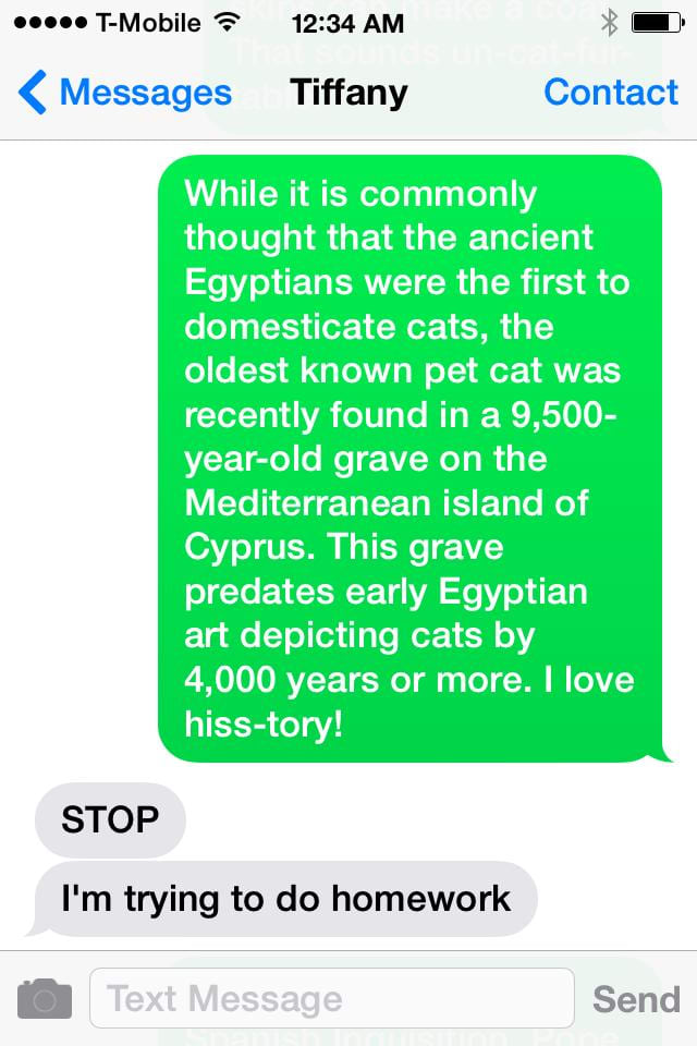 send any phone number 50 cat facts in individual texts from any area
