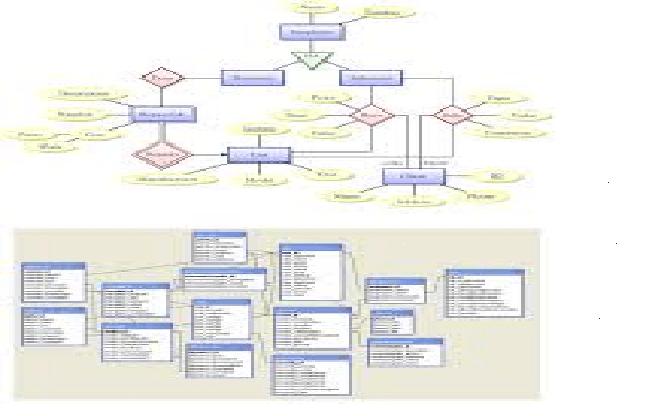Create mysql database design and erd diagram for you by sannanali create mysql database design and erd diagram for you ccuart Choice Image