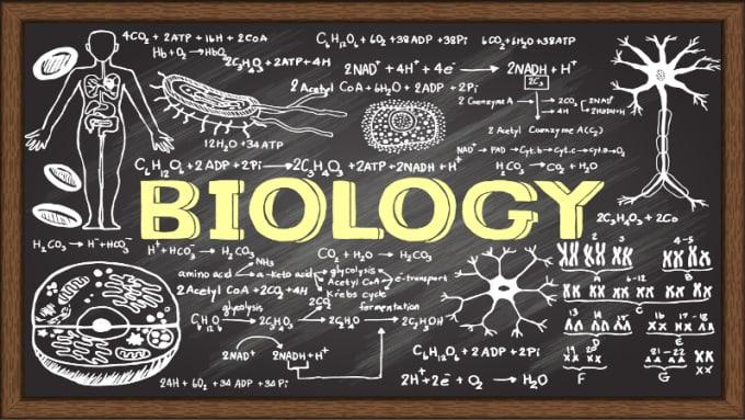 Image result for biology exams