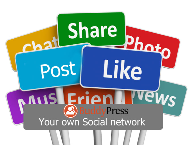 create social networking website for you using buddypress