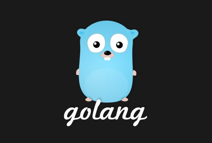 provide you go lang solutions