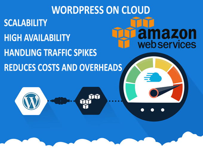 Install or move wordpress to aws by Mohsinali7