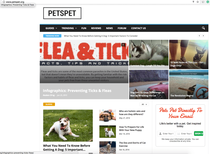 post permanent powerful blog links with high trust flow in the pets niche