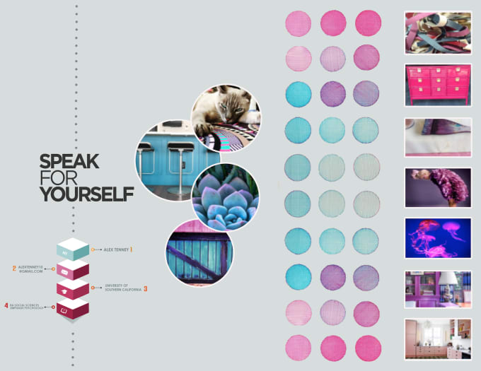 create a professional info graphic for you