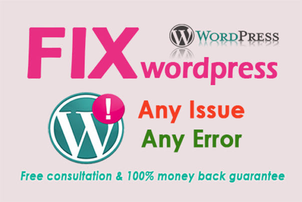 fix any kind wordpress error, issue and problems