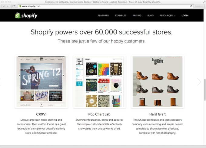 design an amazing shopify website for you