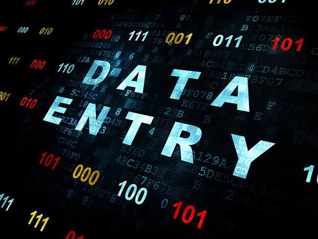 do any data entry in ms word or ms excel