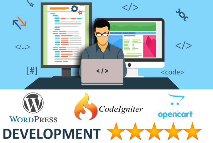 fix any issue in codeigniter wordpress opencart