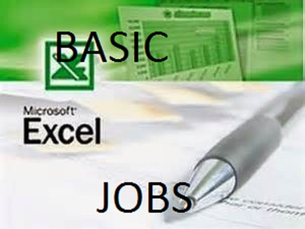 do all your basic ms excel jobs at a cheap rate by gen2writer