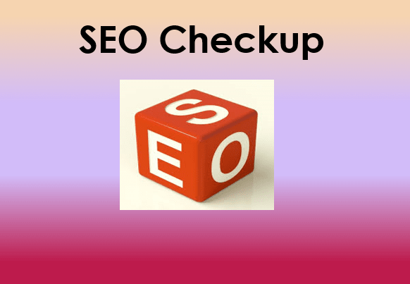 provide a local SEO checkup to help your site